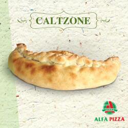 Caltzone Special